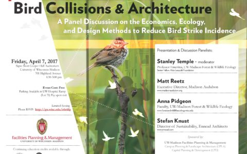 P Bird Collision Flyer Fpm Linked