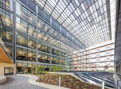 1012 Jeff Goldberg 17