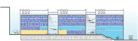 1315 Segment Section