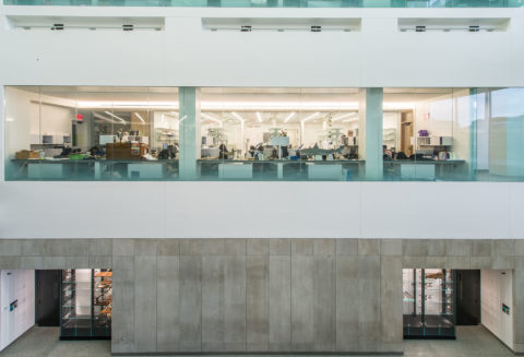 14 Umbsb C Aislinn Weidele Ennead Architects