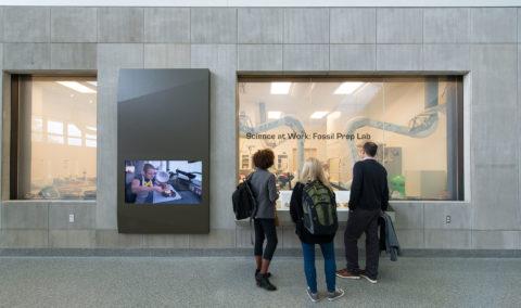 16 Umbsb C Aislinn Weidele Ennead Architects