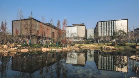 Lingxiao Xie 9442 11 Ps